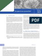 Primera encuesta nacional de juventud en Guatemala - Capítulo 13