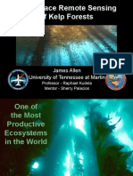 Subsurface Remote Sensing of Kelp Forests