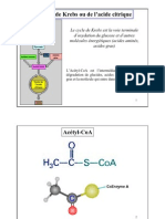 Cycle de Krebs - Biochimie métabolique - Hader Haidous