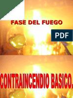 Brigadistas Fase Del Fuego