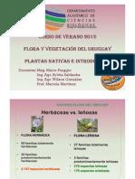 (CURSO VERANO FLORA_2012_COMUNIDADES HERBÁCEAS)
