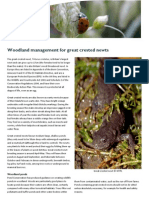 Woodland Management - Great Crested Newts