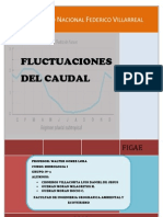Informe Final Fluctuaciones