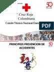 Principios Prevencion de Accidentes Vf