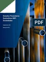 2011 09 Kpmg Audit Estado Financiero Ilustrativo Sociedad