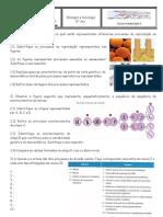 Ficha Formativa II