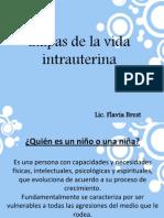 5-Etapas Vida Intrauterina