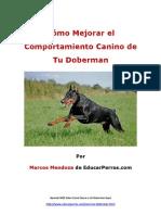 Cómo Mejorar el Comportamiento Canino de tu Doberman