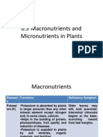 6.9 Macronutrients and Micronutrients in Plants