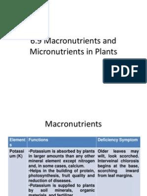 6 9 Macronutrients And Micronutrients In Plants Nutrients Fertilizer
