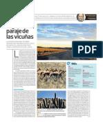 Paraje de Vicunas Peru