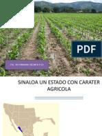 Sinaloa U