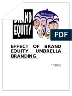 Effect of Brand Equity Umbrella Branding