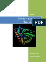 Técnicas laboratorio enzimología