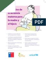 Diptico Lactancia Materna