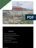 manejoyrecuperacindemineralesdebajaleydelosdesechosminerosmediante-090611171225-phpapp02