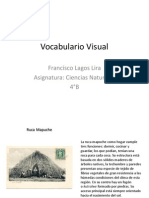 Vocabulario Visual