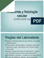 Difusion y Osmosis2(1)