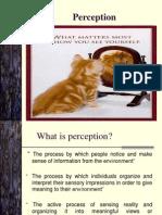 2 - Perception