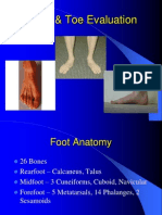 Foot & Toe Evaluation