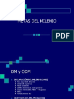 Charla 7metas Del Milenio