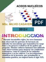 ACIDOS NUCLEÍCOS.ppt(7).pptII