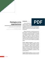 Patologíasenlasorganizaciones