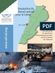 Présentation du Tribunal spécial pour le Liban