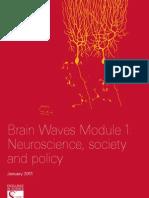 SPC Report Brain Waves 1 Jan11_Web FULL REPORT