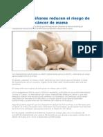 Los Champiñones_reducen_el_riesgo_de_cáncer_de_mama