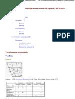 Descripción fonética y fonológica contrastiva del español y del francés