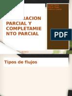 Penetracion Parcial y Completamiento Parcial - Visualbee