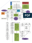 Pathophysiology of Burn