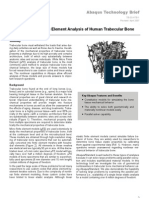 Nonlinear Micro Finite Element Analysis of Human Trabecular Bone 2003