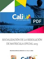 RESOLUCIÓN DE MATRÍCULA OFICIAL 2013