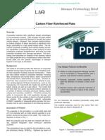 Projectile Impact on a Carbon Fiber Reinforced Plate 2006