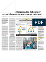 Cedulas Madre del Cancer