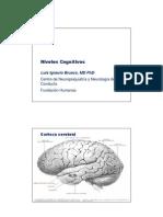 Alzheimer - Dr. Brusco