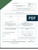 Manual de Organizacion DGESU