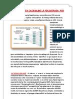 LA REACCIÓN EN CADENA DE LA POLIMERASA  PCR