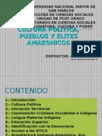 Cultura Politica, Pueblos y Elites Amazonicos_final
