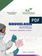 Brucelosis-Bovina4