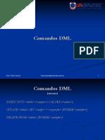 2.2 Comandos DML