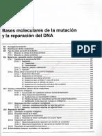 Tema 25 Bases Moleculares de La Mutacion y La Reparacion Del Dna