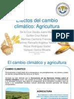 Efectos del cambio climático en Agricultura