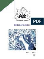 Atlas de Histopatologia 2 Edicion Limitada Ander