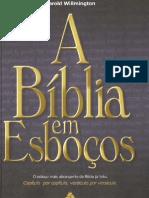A Biblia em Esboáos - Harold L. Willmington