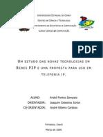 Andre Monografia p2p