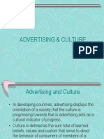 Acs-Advertising & Culture