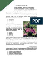 95712118 Geografia Urbana Exercicios